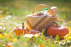 Basket of bread. Basket of  baguette on grass in autumn garden and Stock Photo