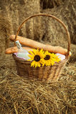 Basket of bread and milk Royalty Free Stock Images