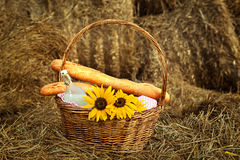 Basket of bread and milk Royalty Free Stock Image