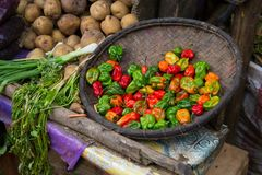 Basket of brightly coloured chilies Royalty Free Stock Photography