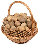 Basket of brown walnuts. On white background Stock Photography
