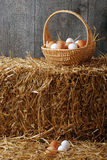 Basket with brown and white eggs Stock Photos