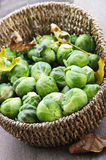 Basket of brussels sprouts Stock Photos
