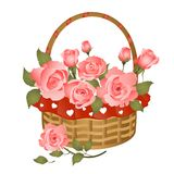 Basket with bunch of roses. Vector greeting card Royalty Free Stock Photography