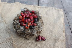 Basket of burdock seeds and rose hips Royalty Free Stock Photo
