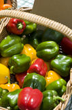 Basket of capsicums Royalty Free Stock Photos