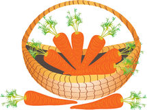 A basket of carrots Stock Photo