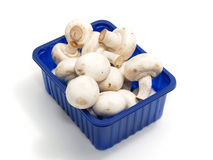 Basket of champignons Stock Images