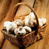 Basket with Champignons Royalty Free Stock Images