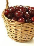 Basket of cherries Stock Photography