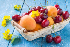 Basket with cherries and apricots berries, flowers loosestrife Stock Images