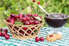 Basket of cherries and cherry jam with biscuit on  background of cherry tree Royalty Free Stock Image