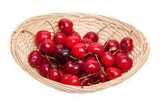 Basket of cherries Stock Images