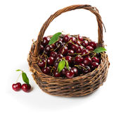 Basket with cherries Stock Image