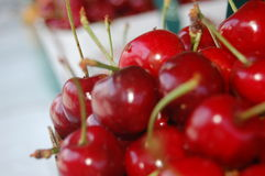 Basket of Cherries. A basket of sweet cherries royalty free stock photography