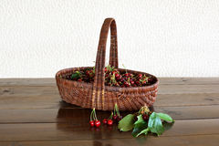 Basket with cherries Stock Photo