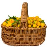 Basket with cherry plum. Stock Image