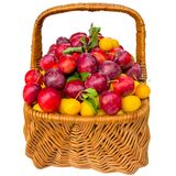 Basket with cherry plum and plums. Stock Photos