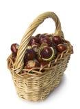 Basket of chestnut on white Royalty Free Stock Photos