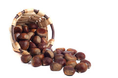 Basket of chestnuts, autumn fruits, isolated. On white Royalty Free Stock Photos