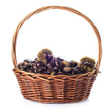 Basket with chestnuts isolated on a white background Stock Photos