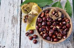 Basket of chestnuts Stock Image