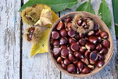 Basket of chestnuts Stock Photography