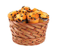 Basket of Chocolate Chip Muffins Stock Images