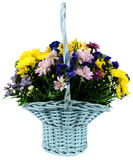 Basket of chrysanthemums and alstroemeria Royalty Free Stock Images