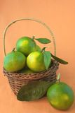 A basket of citrus Stock Image
