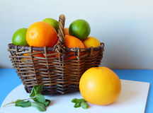 Basket with citrus fruits Stock Photos