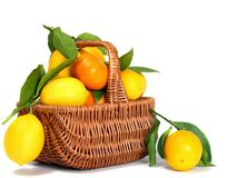 Basket with citrus and white background. Royalty Free Stock Photo