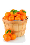 BAsket of Clementines Royalty Free Stock Photos
