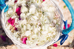 Basket closeup with petals. wedding in cyprus, bride and groom on a stone bridge in Agia Napa. arch and table for Royalty Free Stock Images
