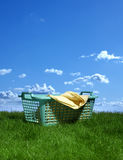 Basket of clothes Royalty Free Stock Photo