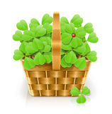 Basket with clover. Vector illustration on white background EPS10. Transparent objects used for shadows and lights drawing Stock Image