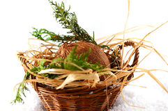Basket with coconut Stock Image
