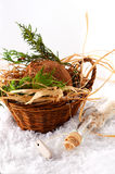Basket with coconut Royalty Free Stock Images