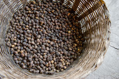 Basket of coffee beans Stock Images