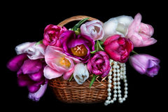 Basket with colorful bouquets of tulips flowers on black backgro Royalty Free Stock Photography