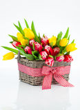Basket with colorful bouquets of tulips. On white background stock images