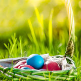 Basket of colorful Easter eggs on green grass Royalty Free Stock Photos