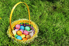 Basket with colorful easter eggs on green lawn Stock Image
