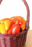 Basket of Colorful Peppers. Brown wicker basket full of bright colorful peppers royalty free stock photo