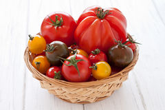 Basket with colorful tomatoes. On a white wooden board Stock Images