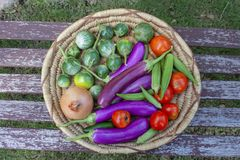 Basket of colorful vegetables including Thai and Japanese eggplant an onion tomatoes and okra - top view stock image