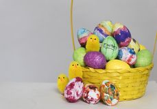 Coloured painted eggs and toy chick are shown in a basket for easter. A basket of coloured eggs and toy chicks are shown ahead of Easter stock photography