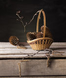 Basket of cones. Still life from spruce cones in a wicker basket royalty free stock photo