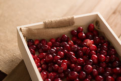 Basket of Cranberries Royalty Free Stock Photo