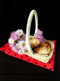 A basket with croissants and flowers Stock Photo